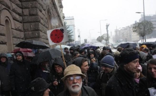 Учени на протест с гнили домати и изцапано бельо, Игнатов разговаря с техни представители