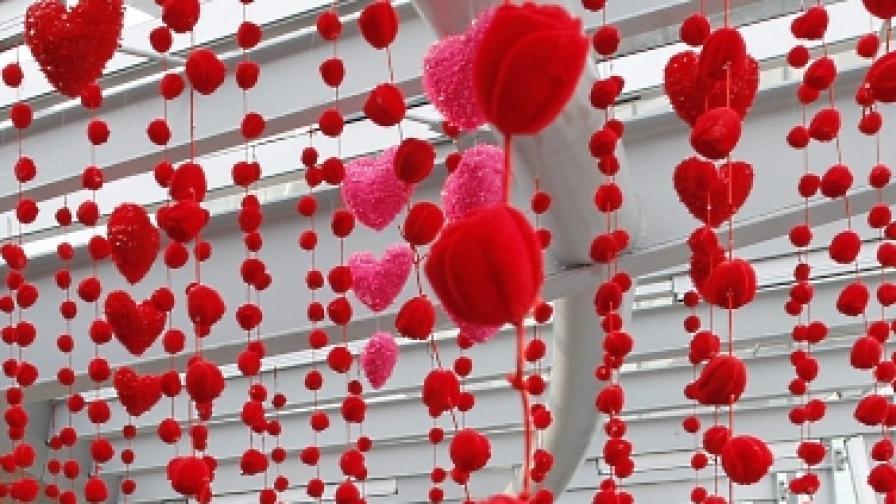 36 хил. самотни сърца се събират в парк на Коледа