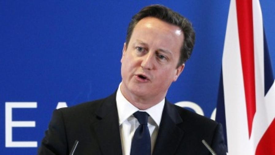 Бивш еврокомисар: Идеите на Камерън за ЕС са безумни