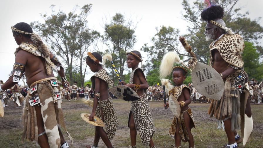 Зулуси танцуват, облечени в традиционни костюми