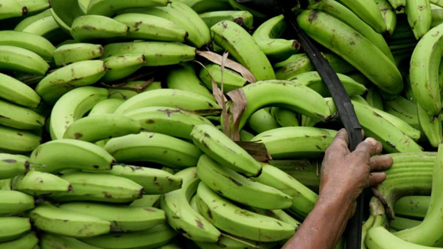 Датски супермаркет получи кокаин вместо банани