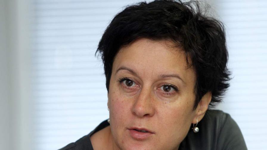 Антоанета Цонева от Института за развитие на публичната среда