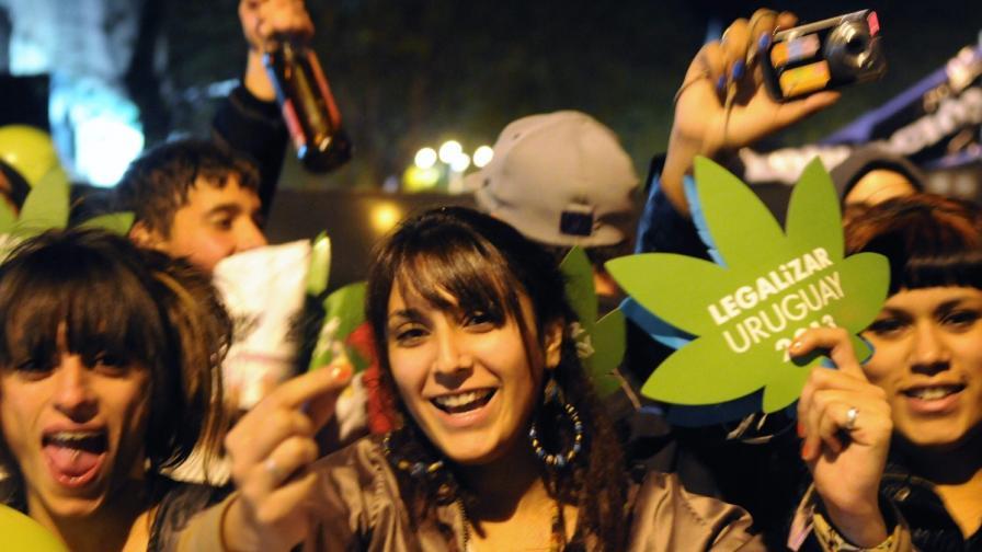 Уругвайски депутати гласуваха за легализиране на марихуаната