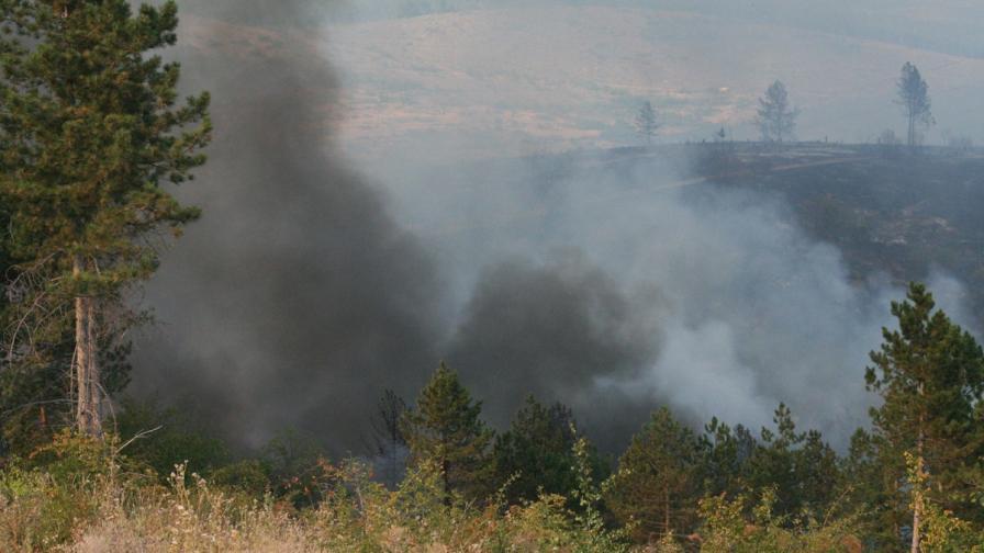 Потушени са пожарите край Ивайловград и Елхово