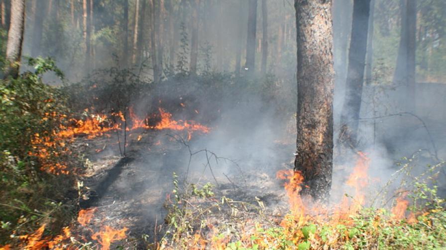 Голям пожар застрашава околностите на Казанлък