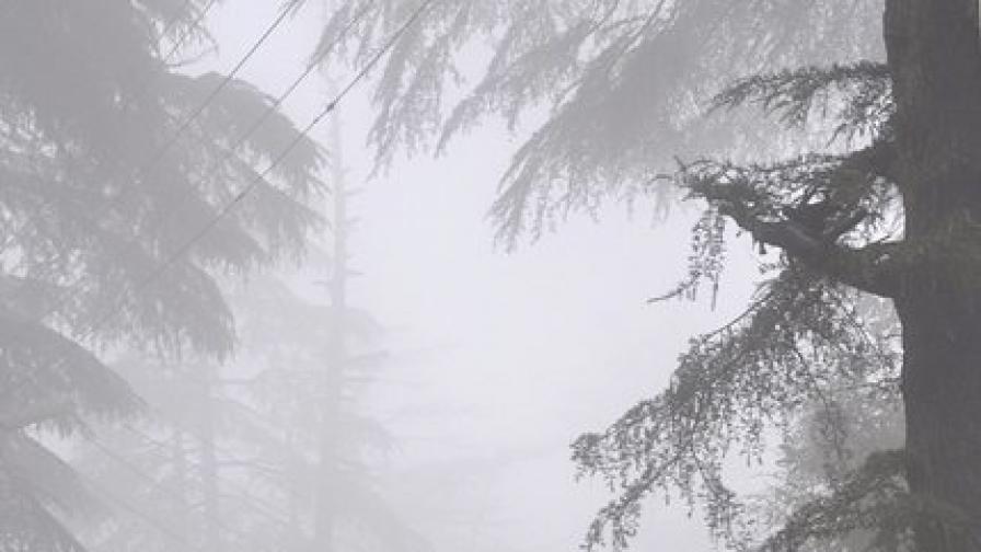 Светкавици погубиха 32 души в Индия