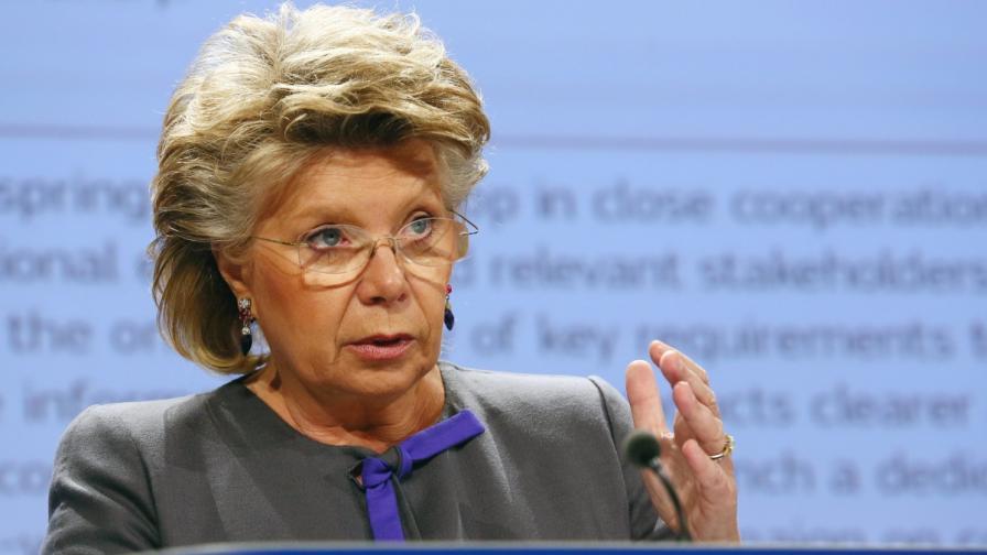 Български евродепутати алармираха Рединг за ситуацията у нас