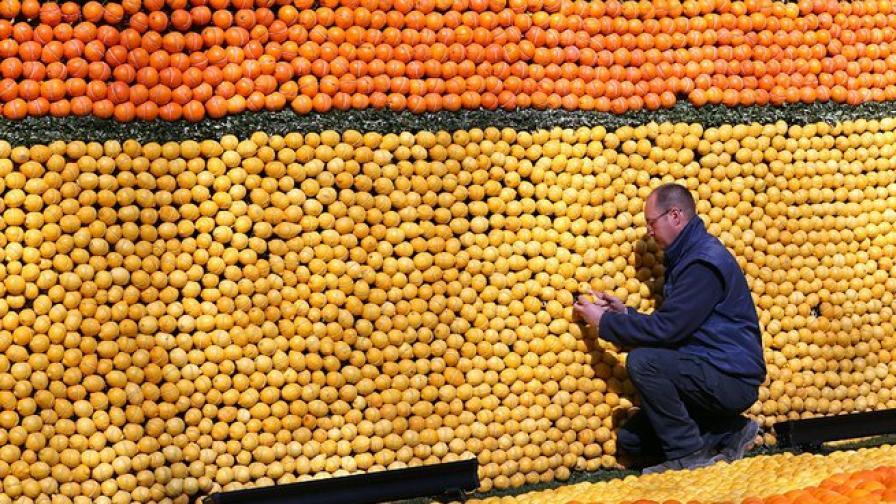 Портокалите изгарят мазнини