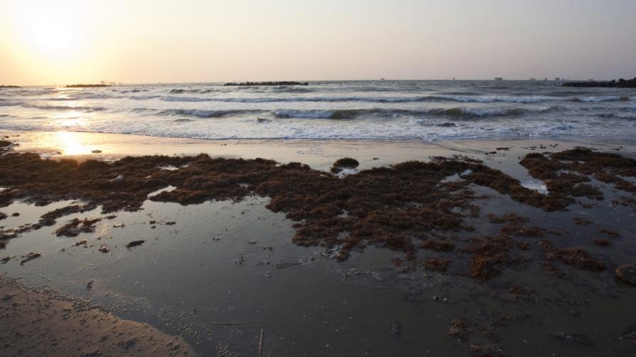 Под световния океан има големи запаси с питейна вода