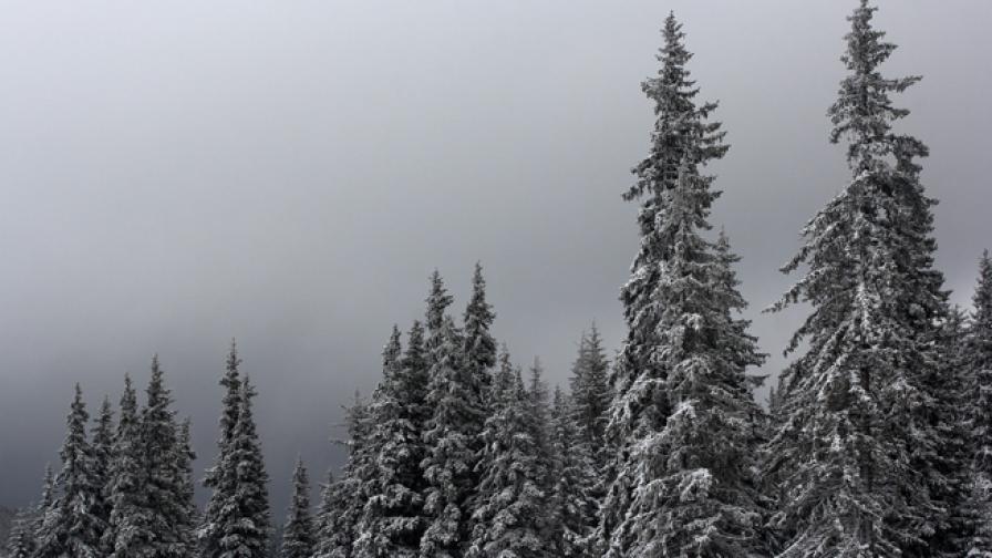 Облачно с мъгли